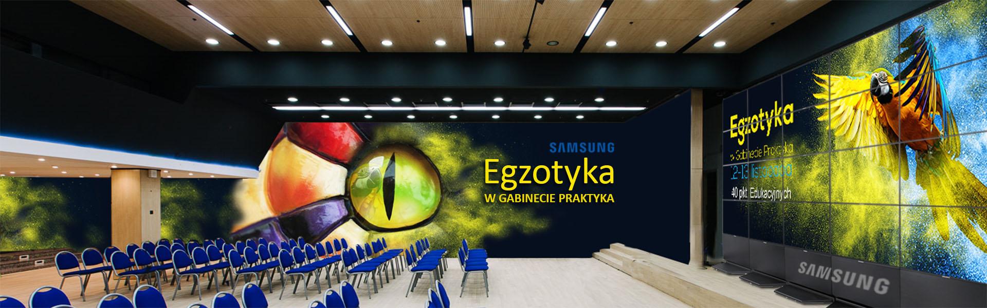 egzotyka w gabinecie praktyka konferencja dla lekarzy weterynarii