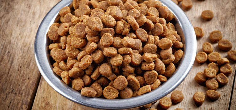 Podział jakościowy karm dla psów i kotów