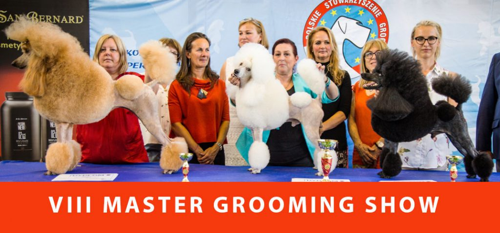 VIII MASTER GROOMING SHOW- relacja