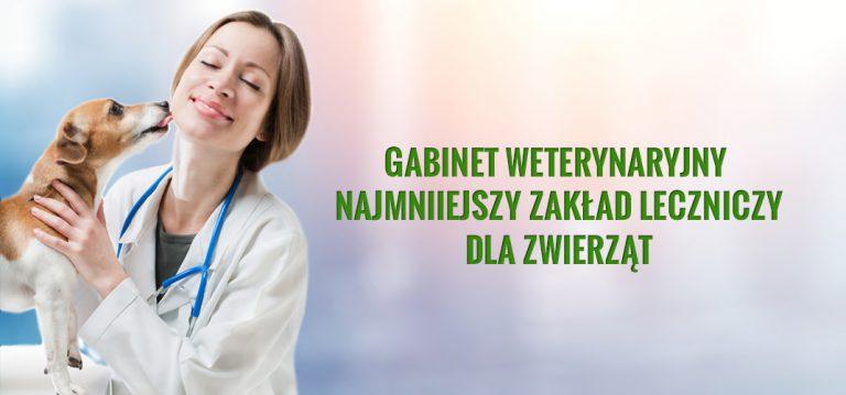 Gabinet weterynaryjny, najmniiejszy zakład leczniczy dla zwierząt.