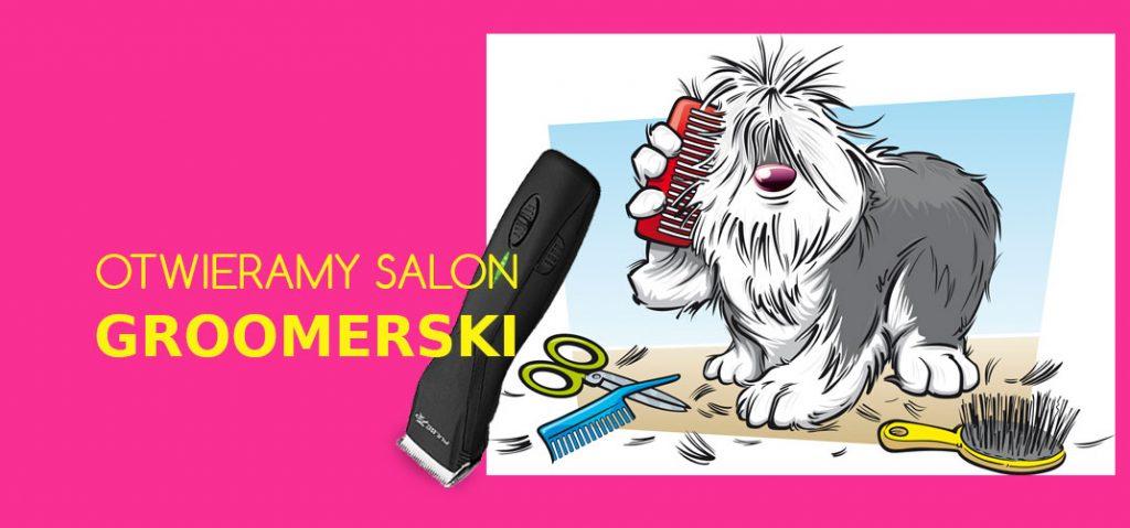 Groomer - psi fryzjer , czyli otwieramy salon piękności dla psów.