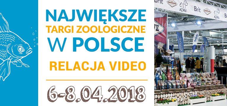 Animals Days Nadarzyn 2018 – Dzień Dla Biznesu.