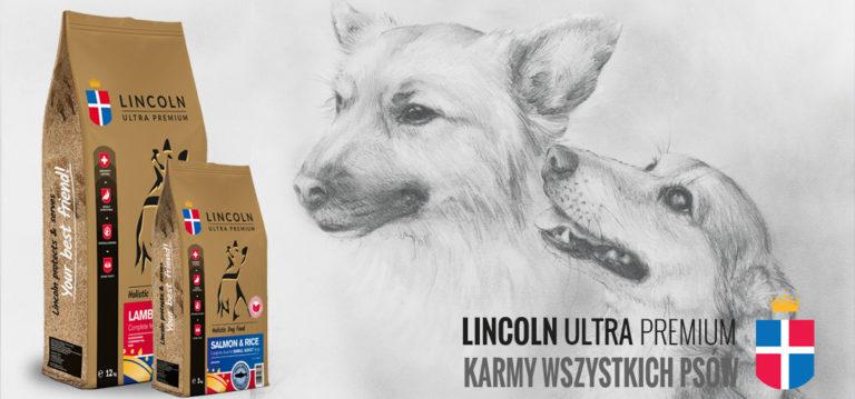 Lincoln Ultra Premium – karmy, które wspierają sklepy zoologiczne.
