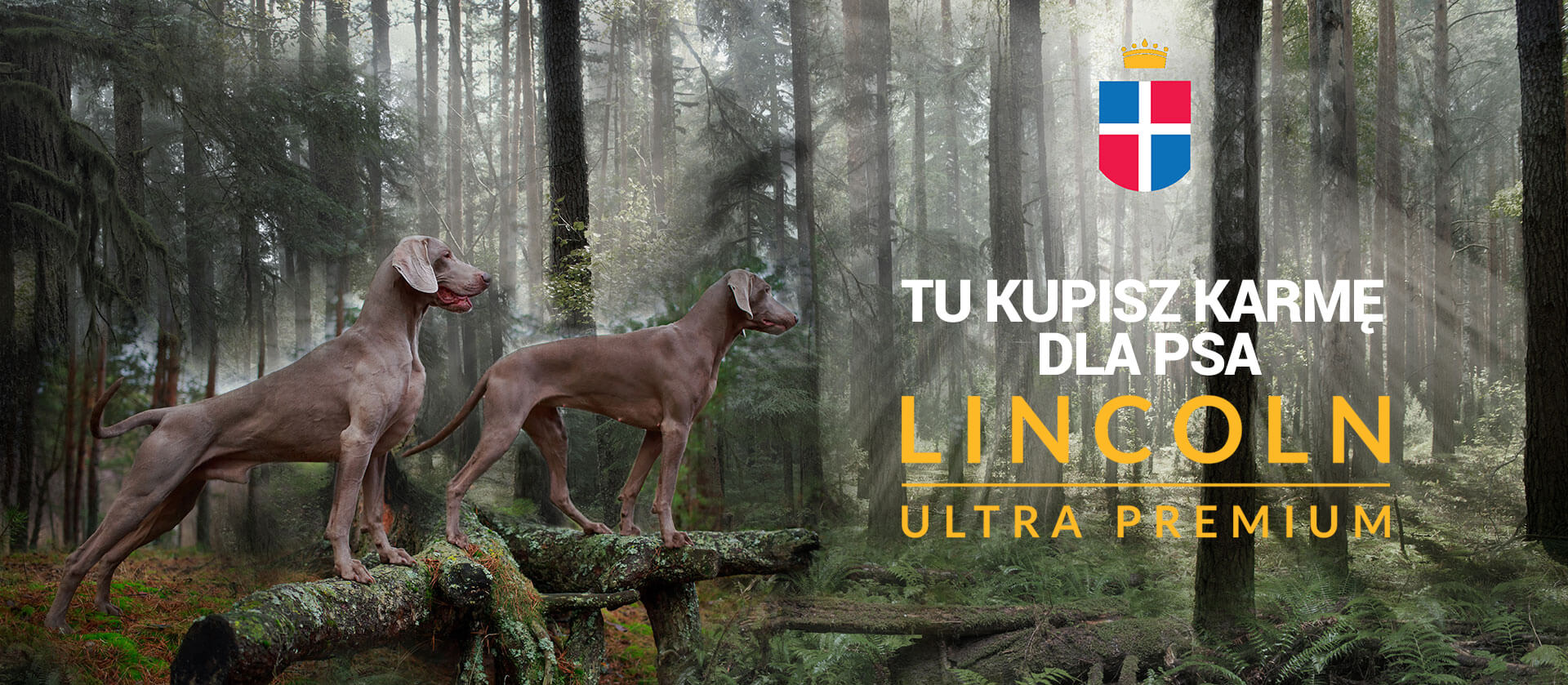 lincoln ultra premium karma dla psa alergika