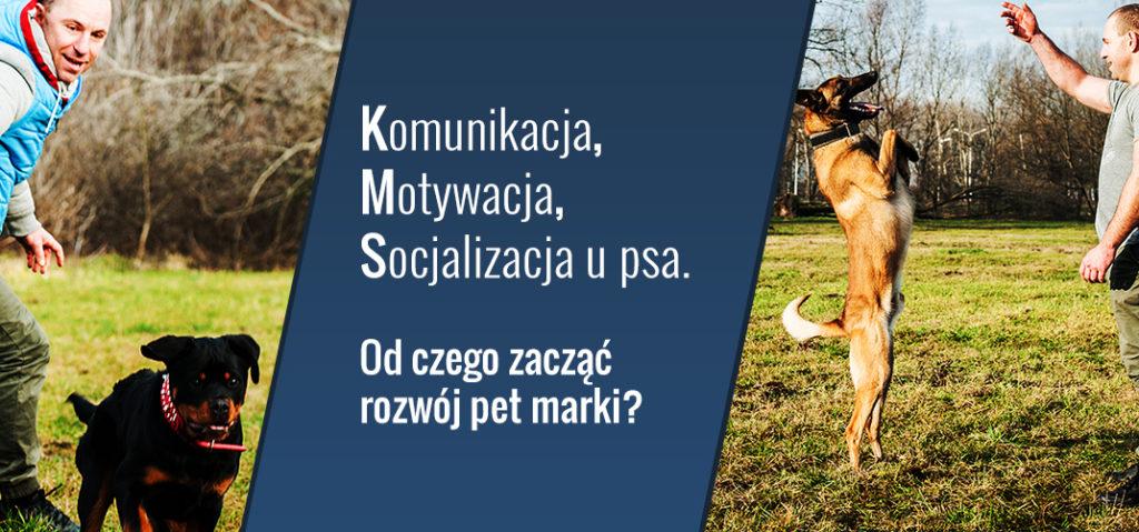 Komunikacja, motywacja, socjalizacja u psa - od czego zacząć rozwój pet marki?
