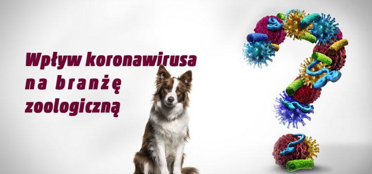 Wpływ koronawirusa na branżę zoologiczną