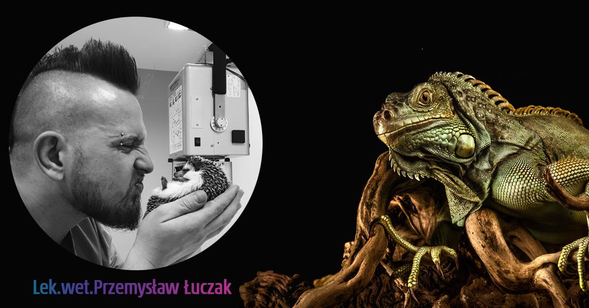 lek.wet. Przemysław Łuczak