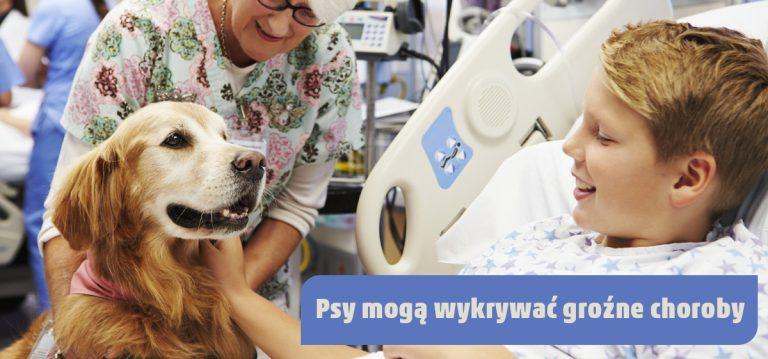 Psy mogą wykrywać choroby