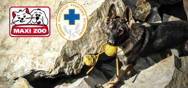 Maxi Zoo po raz kolejny startuje z ogólnopolską akcją charytatywną na rzecz psów ratowniczych GOPR