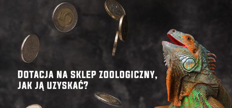 Dotacja na sklep zoologiczny, jak ją uzyskać?